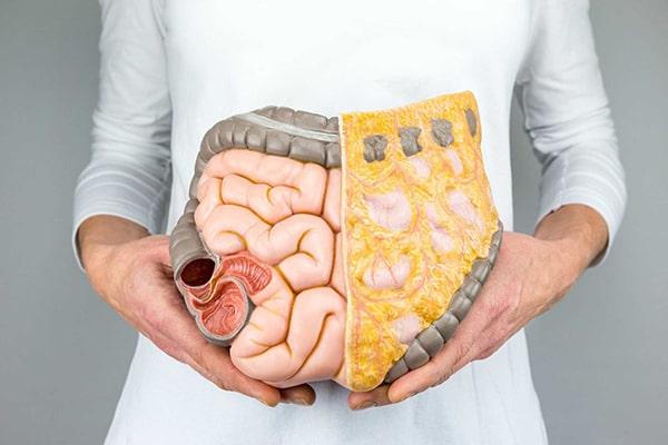 Ăn măng khô giảm nguy cơ bị bệnh đau dạ dày