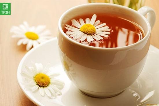 Trà mật ong hoa cúc
